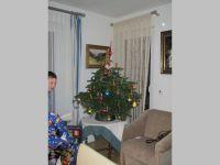 IMG_3210.jpg(800x600)